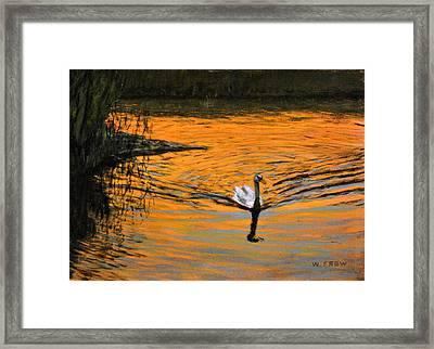 Furnace Brook Resident Framed Print