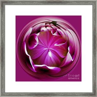Fuschia Framed Print