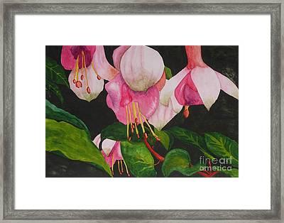 Fuschia Pink Passion Framed Print by Kimberlee Weisker