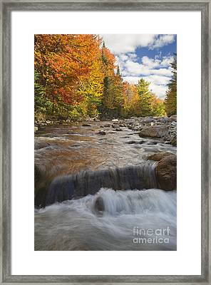 Gale River - White Mountains New Hampshire Framed Print by Erin Paul Donovan