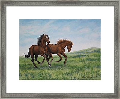 Galloping Horses Framed Print by Penny Birch-Williams