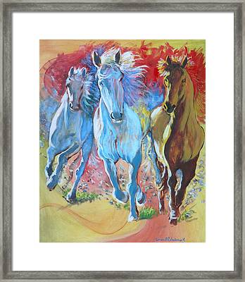 Galloping On Framed Print by Tomas OMaoldomhnaigh