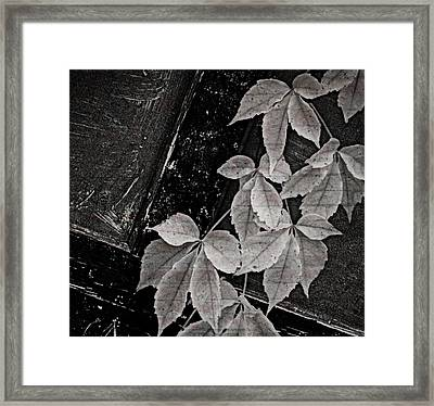 Garage Door With Foliage Framed Print by Chris Berry