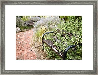 Garden Bench Framed Print by Melany Sarafis