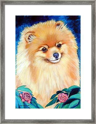 Garden Bud - Pomeranian  Framed Print