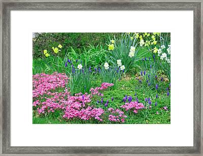 Garden Escape Framed Print