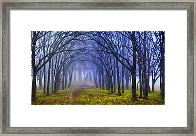 Garden For Good Or Evil Framed Print