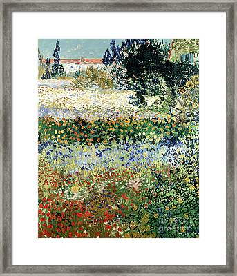 Garden In Bloom Framed Print by Vincent Van Gogh