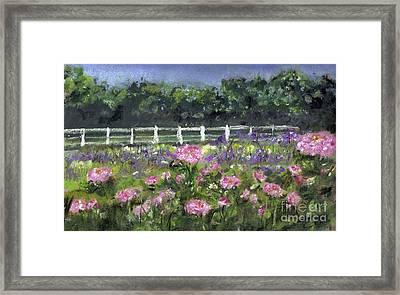 Garden In Vernfield Framed Print