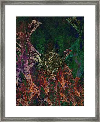 Garden Of Color Framed Print by Christopher Gaston