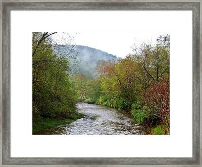 Garden Of Serenity Framed Print