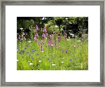 Garden On Bergey Road Framed Print