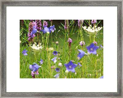 Garden On Bergey Road Detail Framed Print
