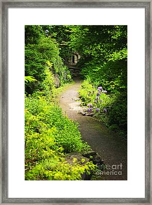 Garden Path Framed Print by Elena Elisseeva