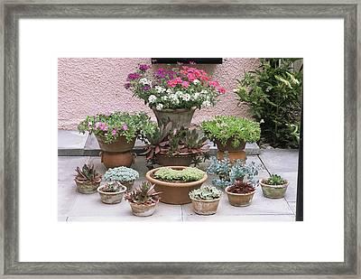 Garden Patio Display Framed Print