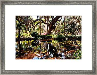 Garden Reflections Framed Print by Bob and Nancy Kendrick