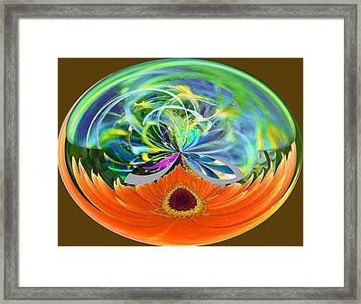 Garden Sphere Framed Print by Molly McPherson