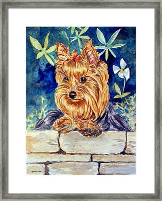 Garden Sprite - Yorkshire Terrier Framed Print by Lyn Cook