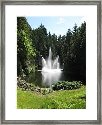 Garden Water Show Framed Print