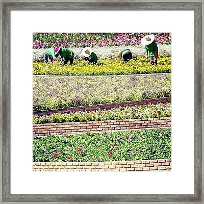 gardening Adds Years To Your Life And Framed Print