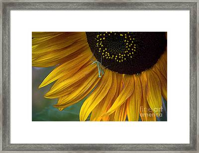 Garden's Friend Framed Print