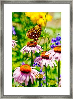 Framed Print featuring the photograph Gardens Of Mount Vernon by Randall  Cogle