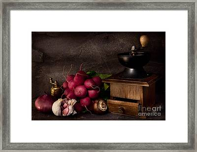 Garlic And Radishes Framed Print by Ann Garrett