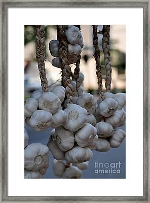 Garlic Framed Print by Nicky Dou