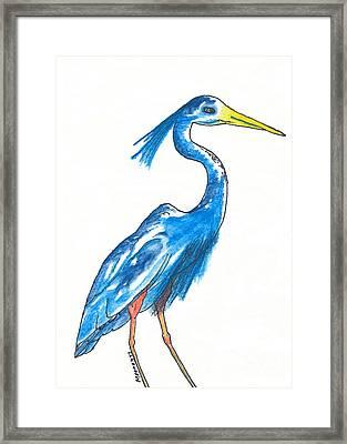 Garza Azul Framed Print