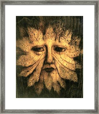 Gaspar Framed Print by Keven Shaffer