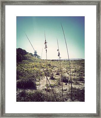 Gasparilla View-vintage Framed Print by Chris Andruskiewicz