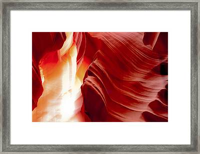 Gasping To Get Out Framed Print