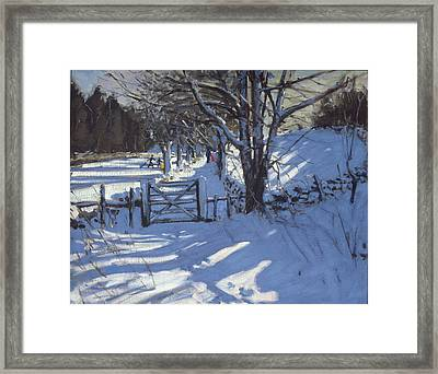 Gate Near Youlgreave Derbyshire Framed Print by Andrew Macara