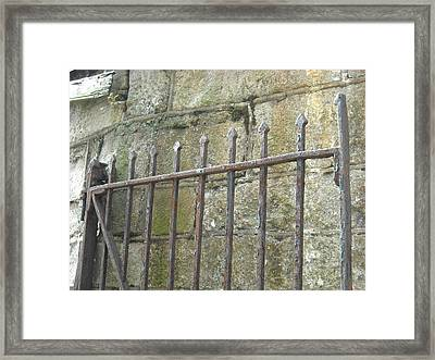 Framed Print featuring the photograph Gate Top  by Christophe Ennis