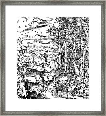 Gathering Cinnamon Bark In India, 1579 Framed Print by Science Source