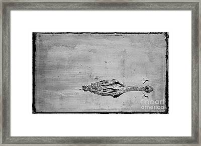 Gator And Dragonfly Framed Print by Jim Wright