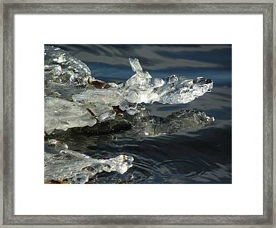 Gator Ice Framed Print