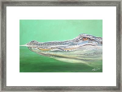 Gator Framed Print by Shannon Wiley
