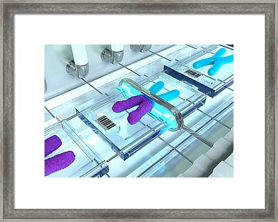 Gene Therapy, Conceptual Image Framed Print by David Mack