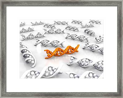 Genetic Uniqueness, Artwork Framed Print