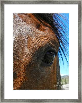 Gentle Soul Framed Print by KD Johnson