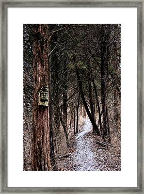 Gently Into The Forest My Friend Framed Print