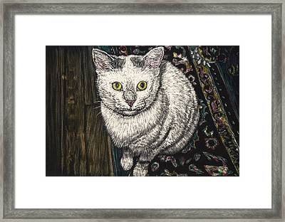 Georgie The Cat Framed Print by Robert Goudreau