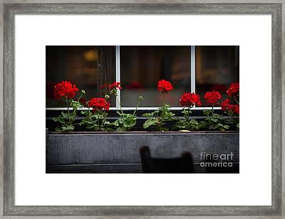 Geranium Flower Box Framed Print by Doug Sturgess