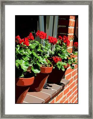 Geraniums In Germany Framed Print by Carol Groenen