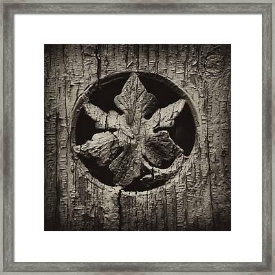 German Leaf Framed Print by Carrie Cranwill