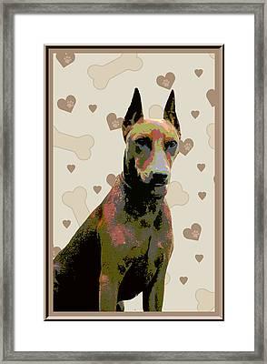 German Pinscher Framed Print by One Rude Dawg Orcutt