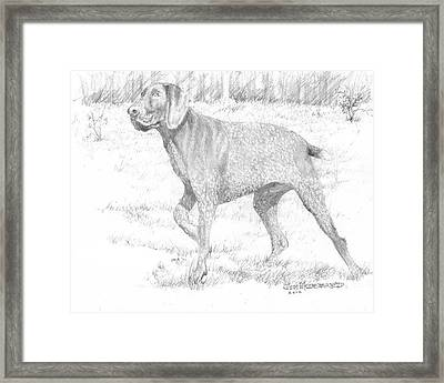Framed Print featuring the drawing German Shorthaired Pointer by Jim Hubbard