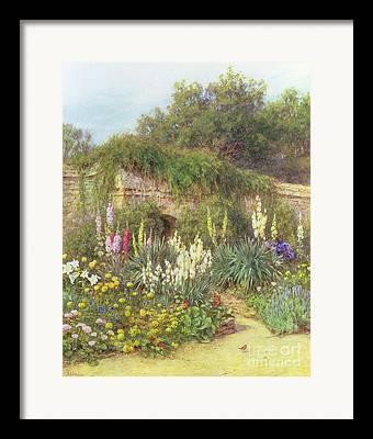 Bedding Plants Framed Prints