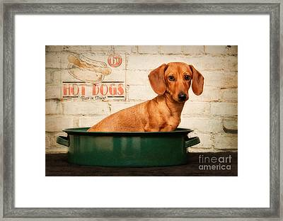 Get Your Hot Dogs Framed Print by Susan Candelario